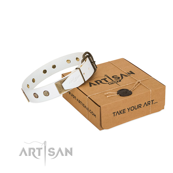 Rust resistant traditional buckle on dog collar for easy wearing
