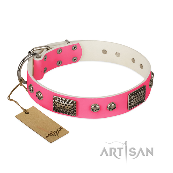 Adjustable full grain genuine leather dog collar for walking your dog