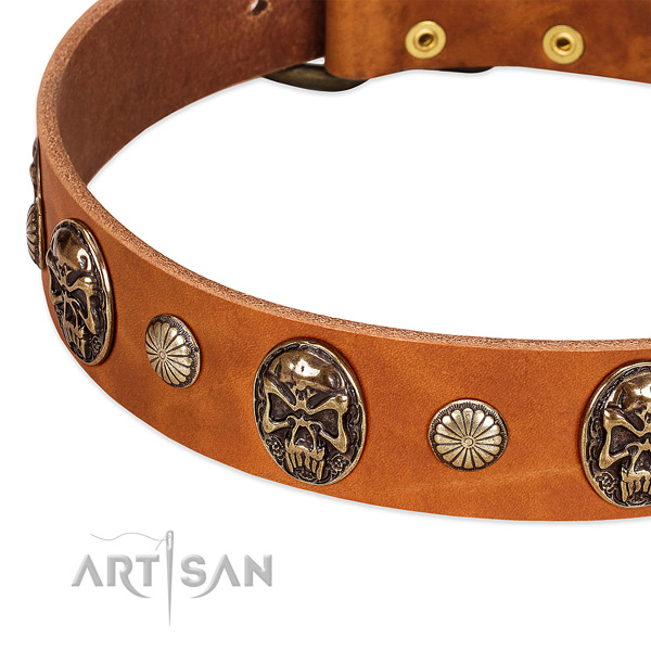 Corrosion proof D-ring on full grain natural leather dog collar for your dog