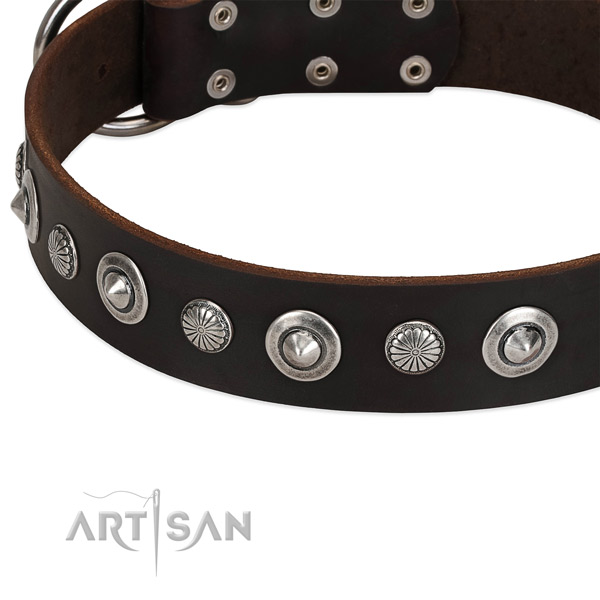 Stylish design embellished dog collar of durable natural leather