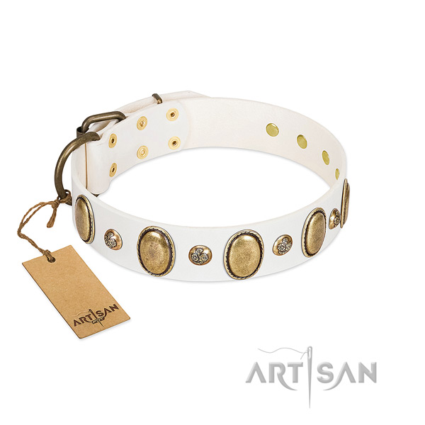 Full grain natural leather dog collar of quality material with remarkable adornments