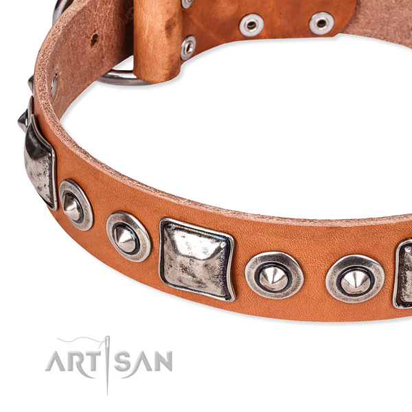 Quality natural genuine leather dog collar made for your impressive canine