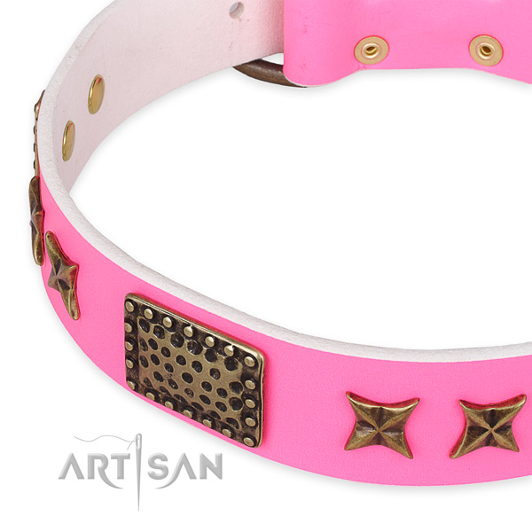 Leather collar with reliable hardware for your lovely four-legged friend