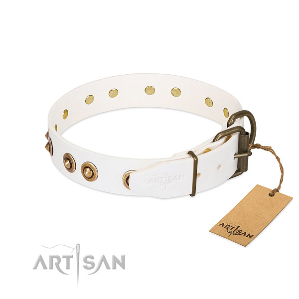 Corrosion resistant decorations on full grain genuine leather dog collar for your canine
