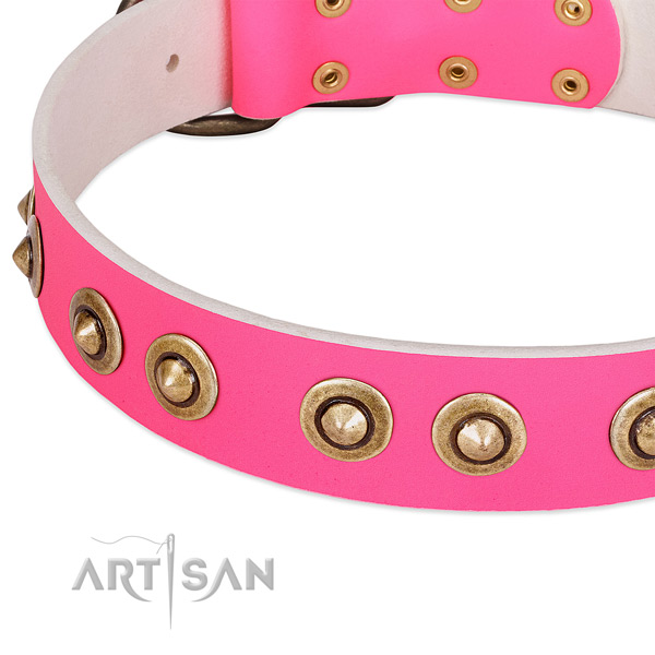 Corrosion proof fittings on natural genuine leather dog collar for your four-legged friend