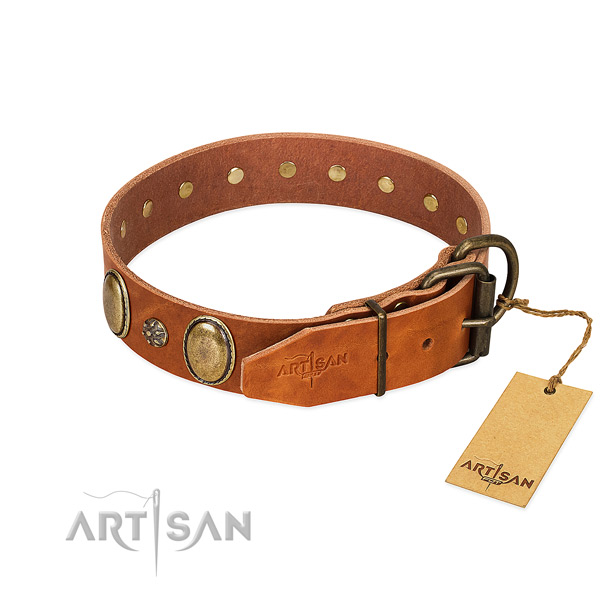 Daily use gentle to touch full grain leather dog collar