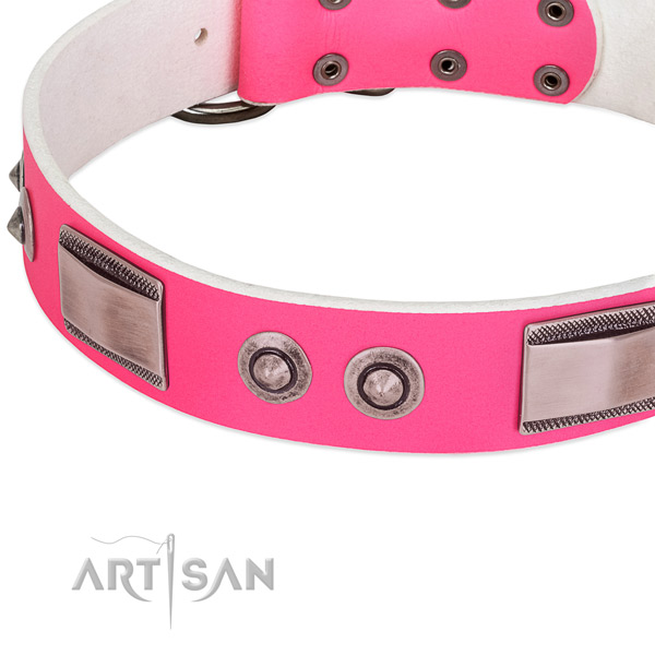 Exquisite genuine leather collar with studs for your dog