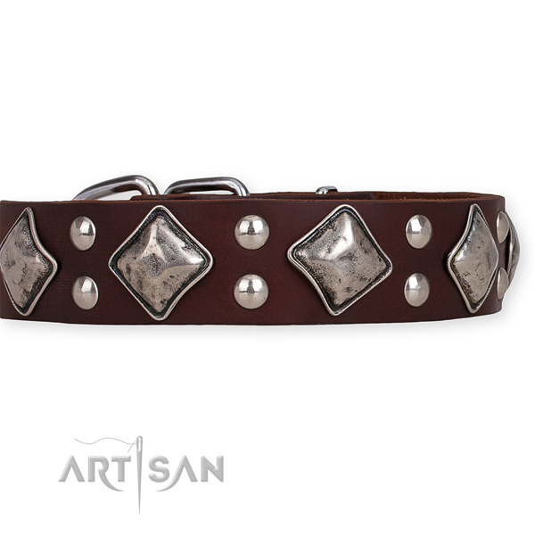Full grain natural leather dog collar with amazing rust resistant embellishments