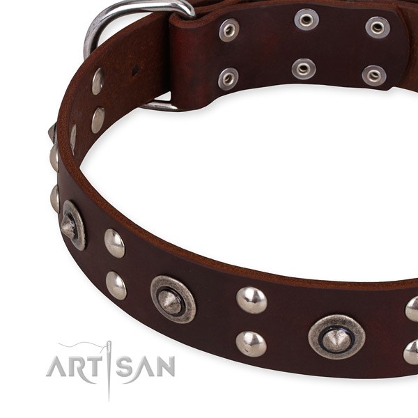 Leather collar with rust-proof D-ring for your lovely four-legged friend