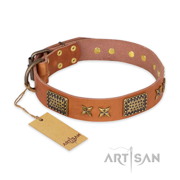 Embellished genuine leather dog collar with durable hardware