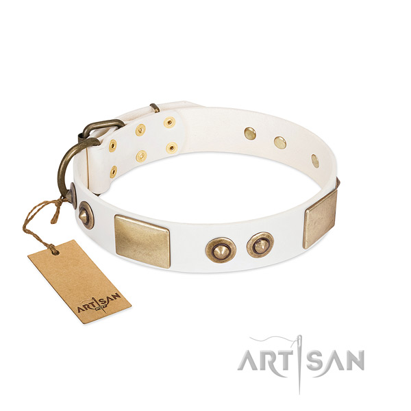 Corrosion proof decorations on natural genuine leather dog collar for your pet