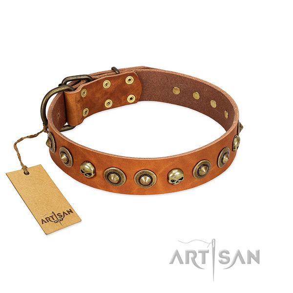 Natural leather collar with awesome adornments for your dog