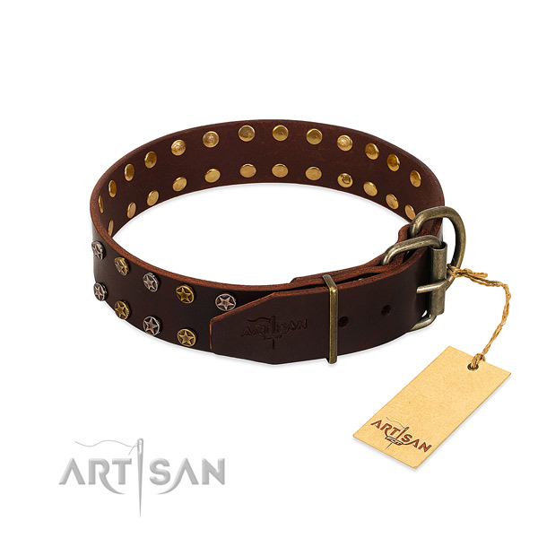 Fancy walking full grain leather dog collar with unusual adornments