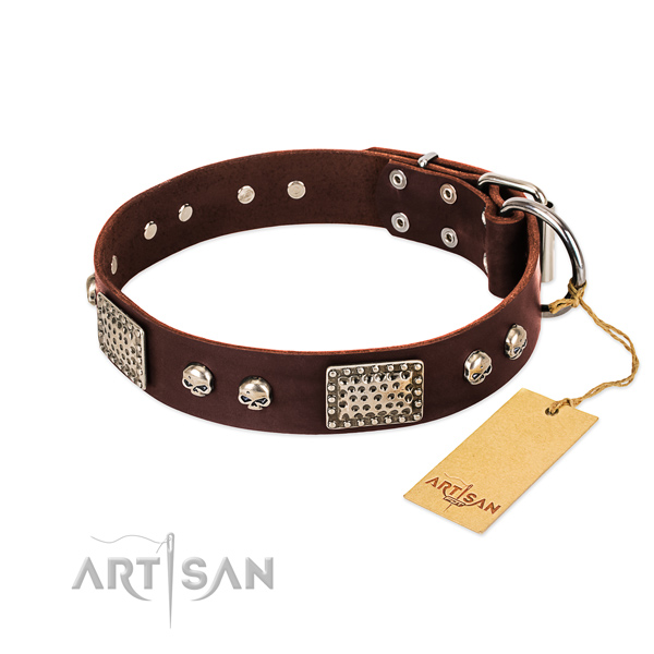 Easy wearing full grain natural leather dog collar for basic training your doggie