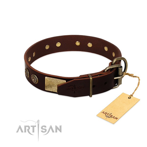 Strong hardware on leather dog collar for your canine