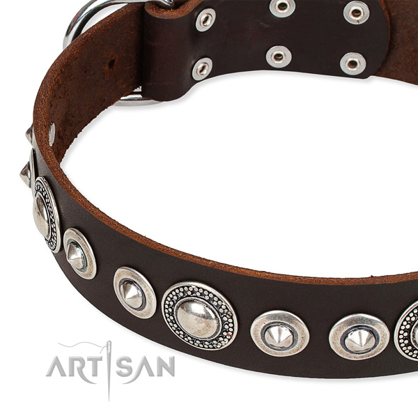 Fancy walking adorned dog collar of quality full grain natural leather