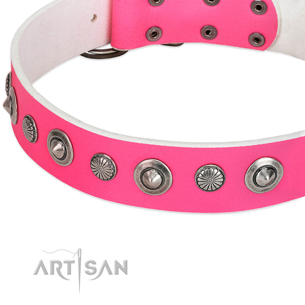 Genuine leather collar with rust resistant fittings for your beautiful pet