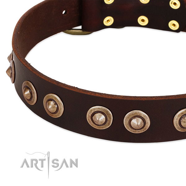 Corrosion proof fittings on leather dog collar for your four-legged friend