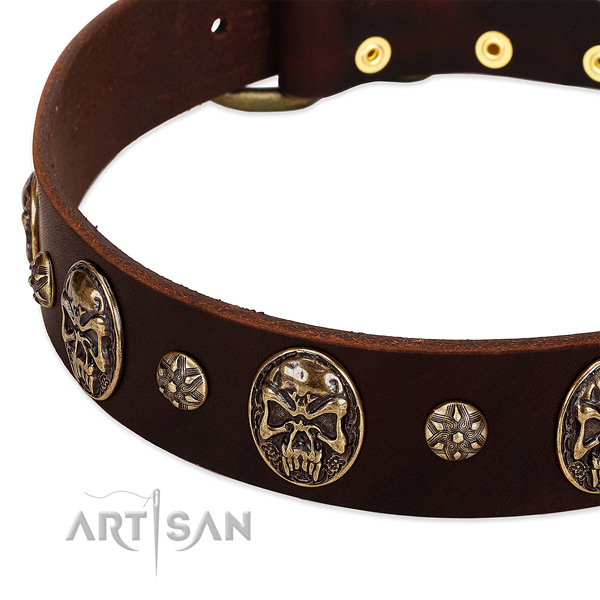 Strong traditional buckle on genuine leather dog collar for your dog