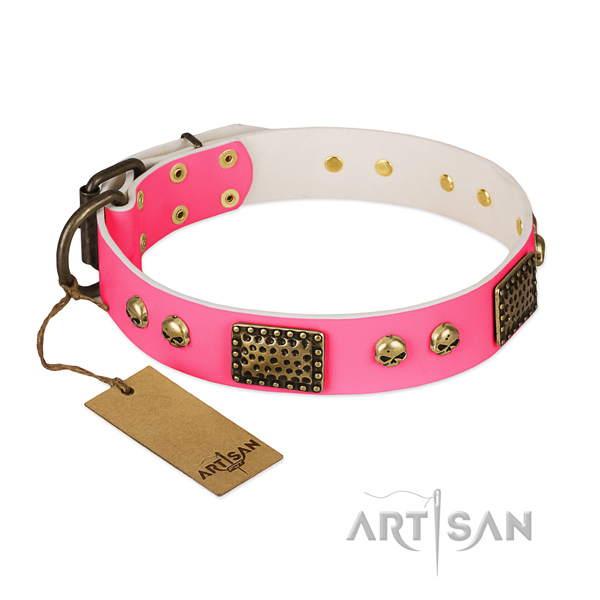 Adjustable full grain natural leather dog collar for everyday walking your doggie