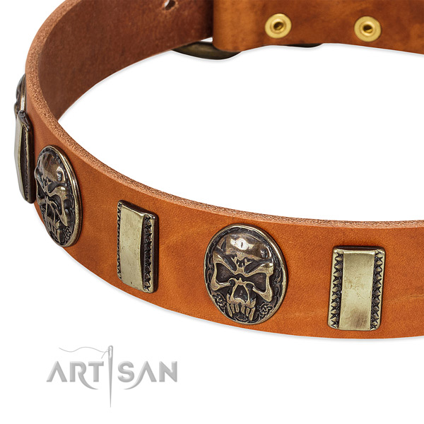 Corrosion resistant fittings on full grain leather dog collar for your dog