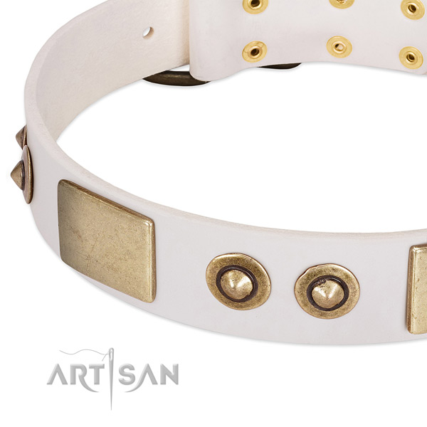 Corrosion proof D-ring on natural genuine leather dog collar for your four-legged friend