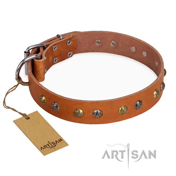 Comfy wearing stylish design dog collar with reliable fittings