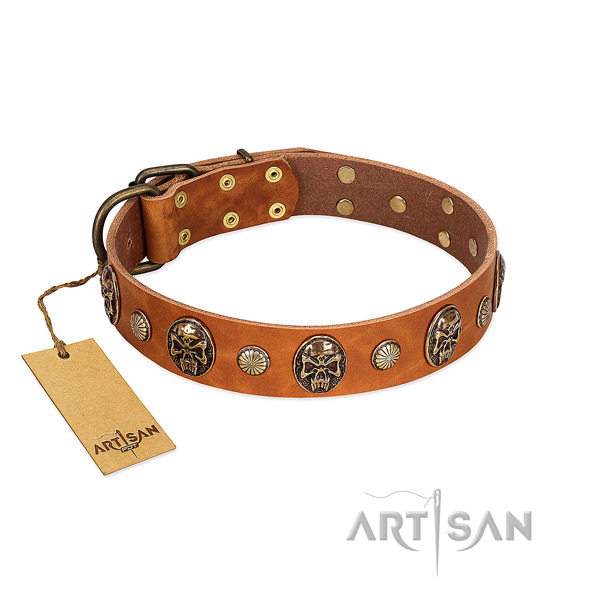 Impressive full grain natural leather dog collar for basic training