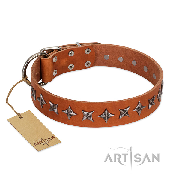 Comfy wearing dog collar of fine quality natural leather with decorations