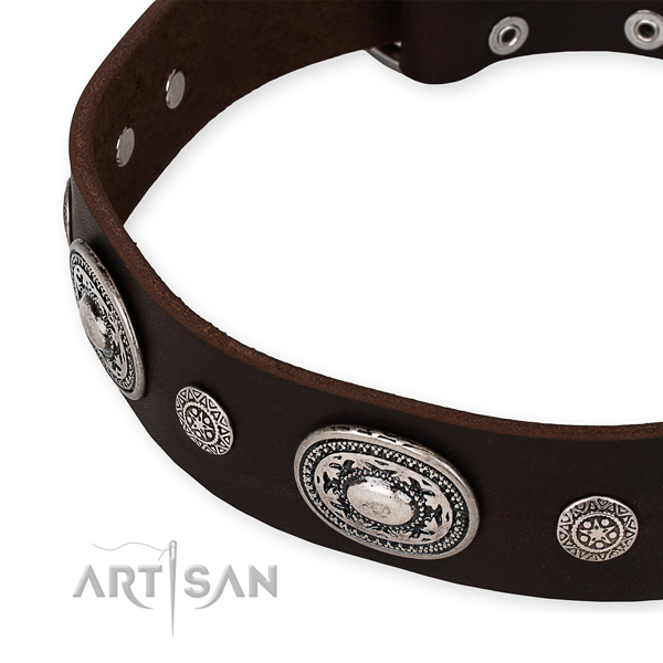 Top notch full grain leather dog collar handmade for your impressive four-legged friend