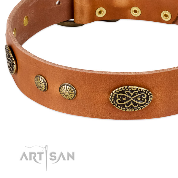 Rust resistant traditional buckle on genuine leather dog collar for your four-legged friend