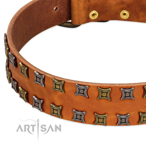 High quality full grain leather dog collar for your beautiful doggie