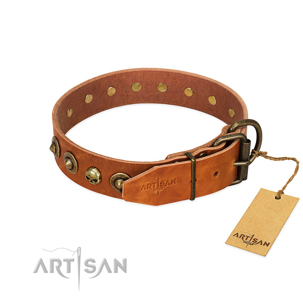 Leather collar with stylish adornments for your doggie
