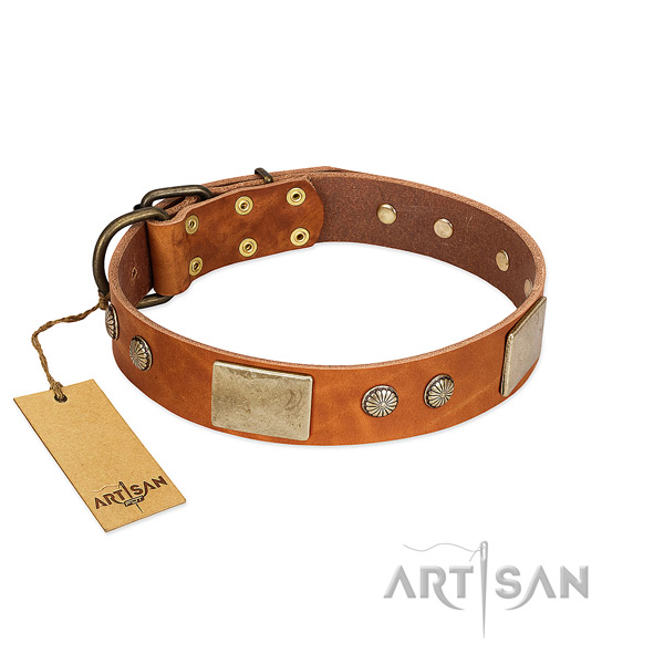Easy adjustable genuine leather dog collar for basic training your pet