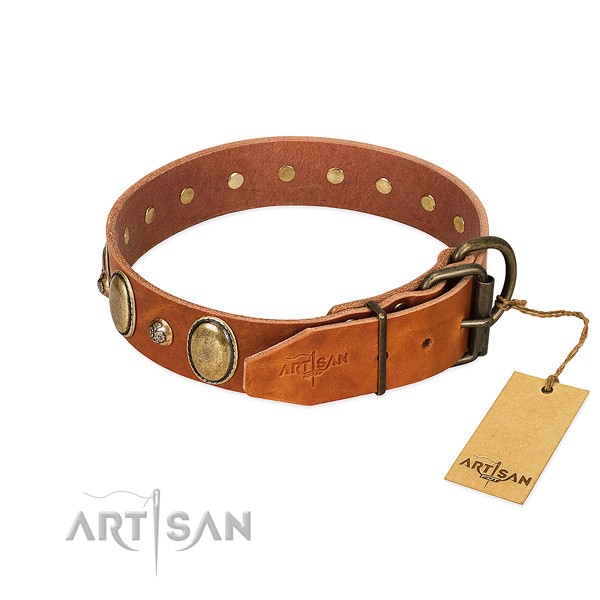 Impressive genuine leather dog collar with corrosion resistant D-ring