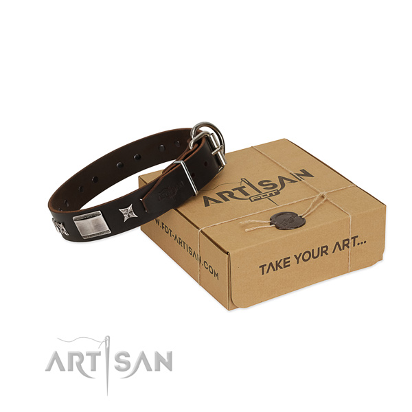 Trendy collar of full grain genuine leather for your handsome dog