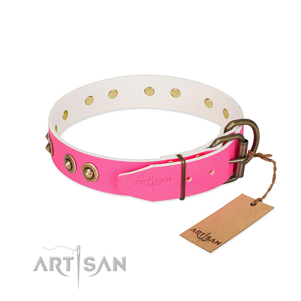 Leather dog collar with strong fittings and studs