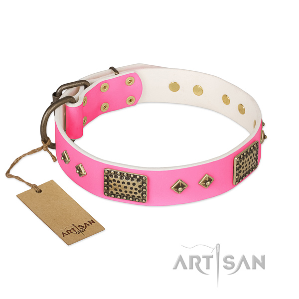Adjustable leather dog collar for everyday walking your doggie