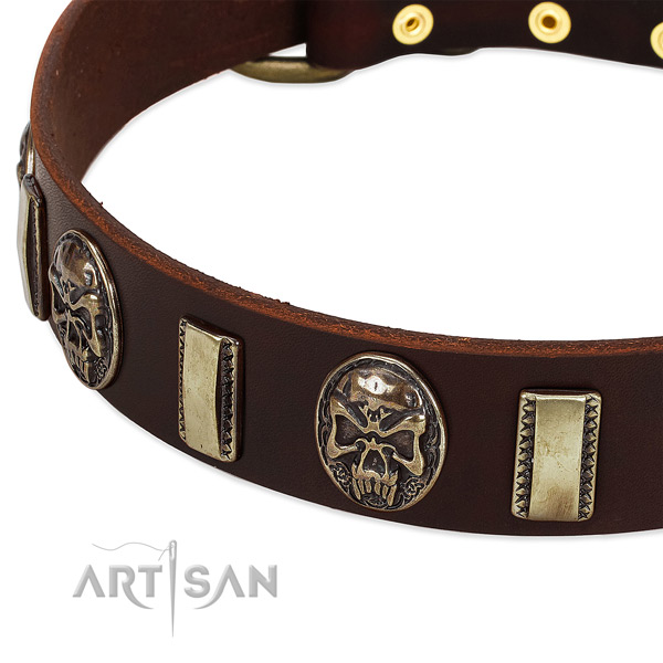 Durable fittings on natural genuine leather dog collar for your canine