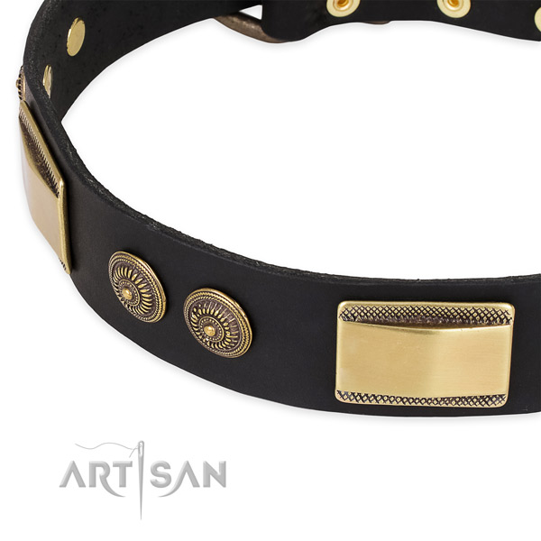 Designer full grain leather collar for your lovely doggie