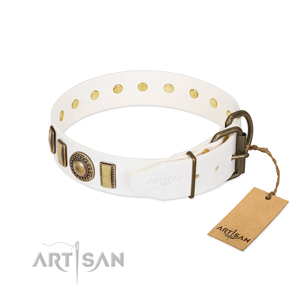 Easy to adjust leather dog collar with corrosion proof fittings