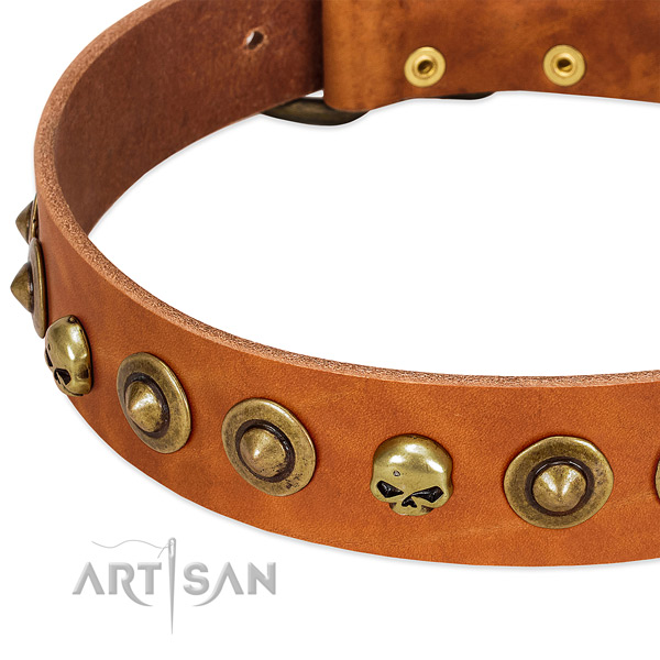 Fashionable decorations on full grain genuine leather collar for your doggie