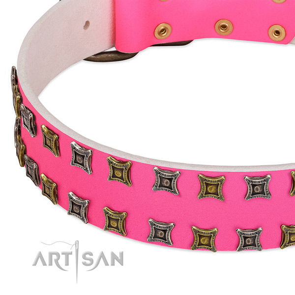 Natural leather dog collar with embellishments for your beautiful doggie
