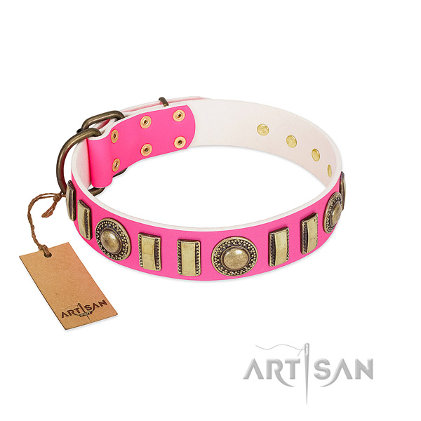Decorated leather dog collar with strong D-ring