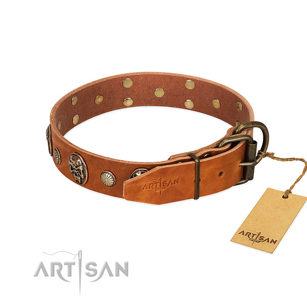 Durable D-ring on leather collar for everyday walking your pet