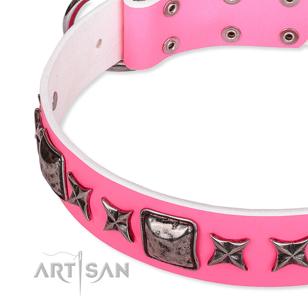 Fancy walking studded dog collar of reliable full grain natural leather
