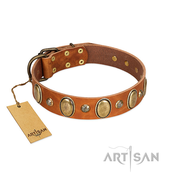 Full grain natural leather dog collar of flexible material with top notch adornments