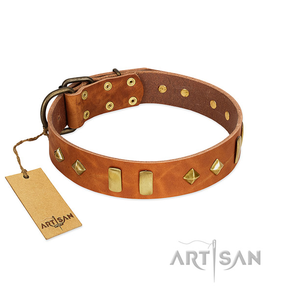 Everyday walking top notch full grain genuine leather dog collar with decorations