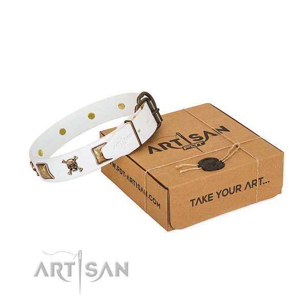 Extraordinary full grain genuine leather dog collar with rust resistant embellishments