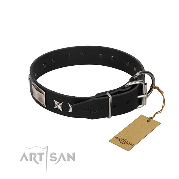 High quality leather dog collar with reliable hardware